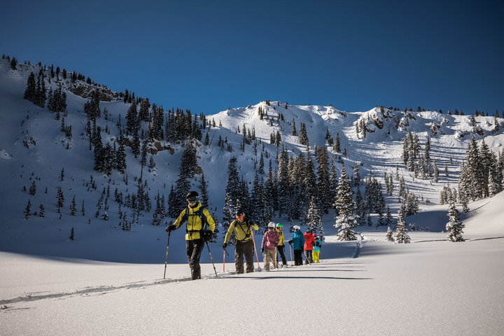 Group of skiers touring across a basin in Alta backcountry