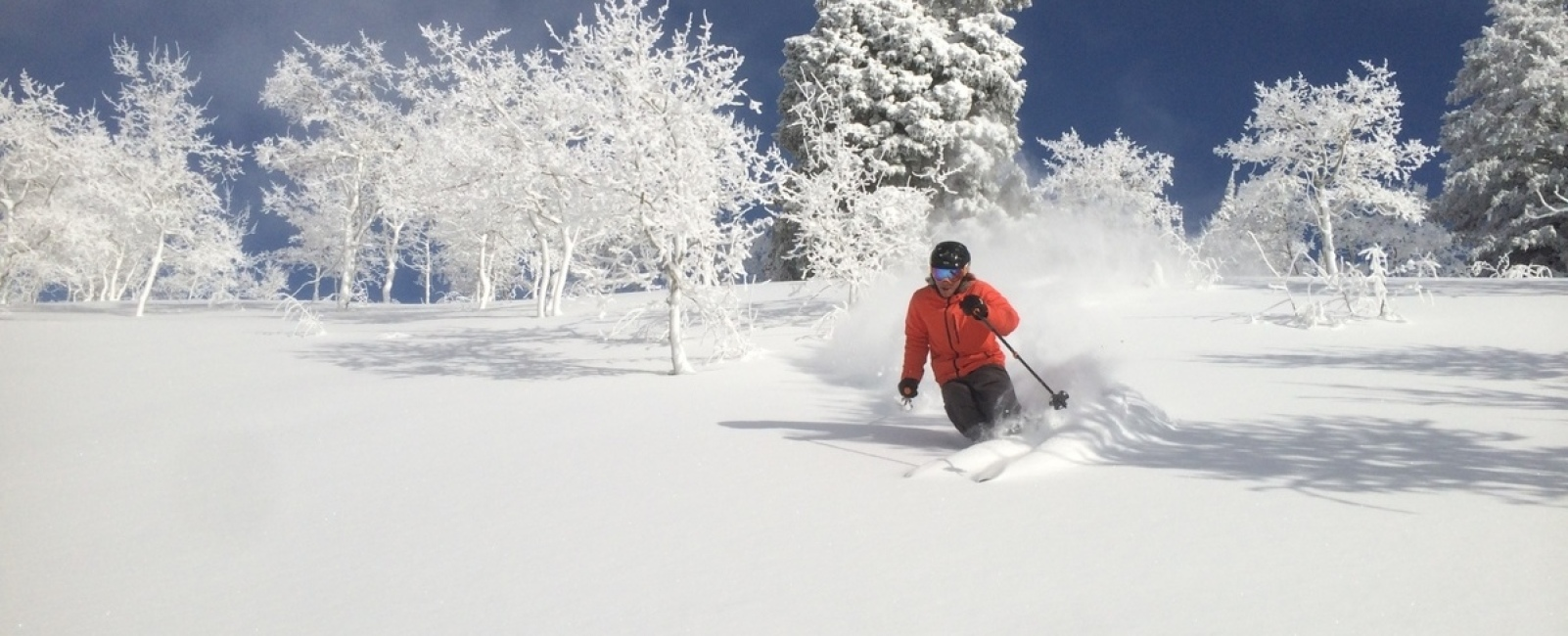 Powder Mountain (and the rest of the Wasatch) Is Going Off!