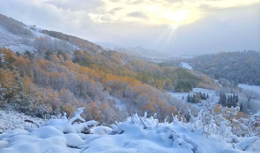 First Major Snow In the Wasatch