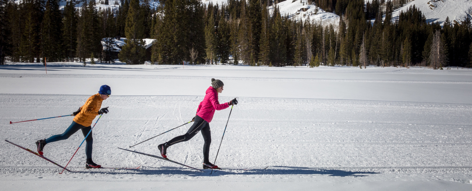 Your Comprehensive Guide to Utah's Best Nordic Skiing