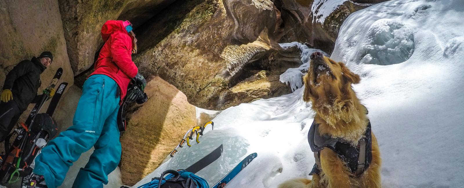 Ice Climbing Through A Utah Slot Canyon With Kicker Dog