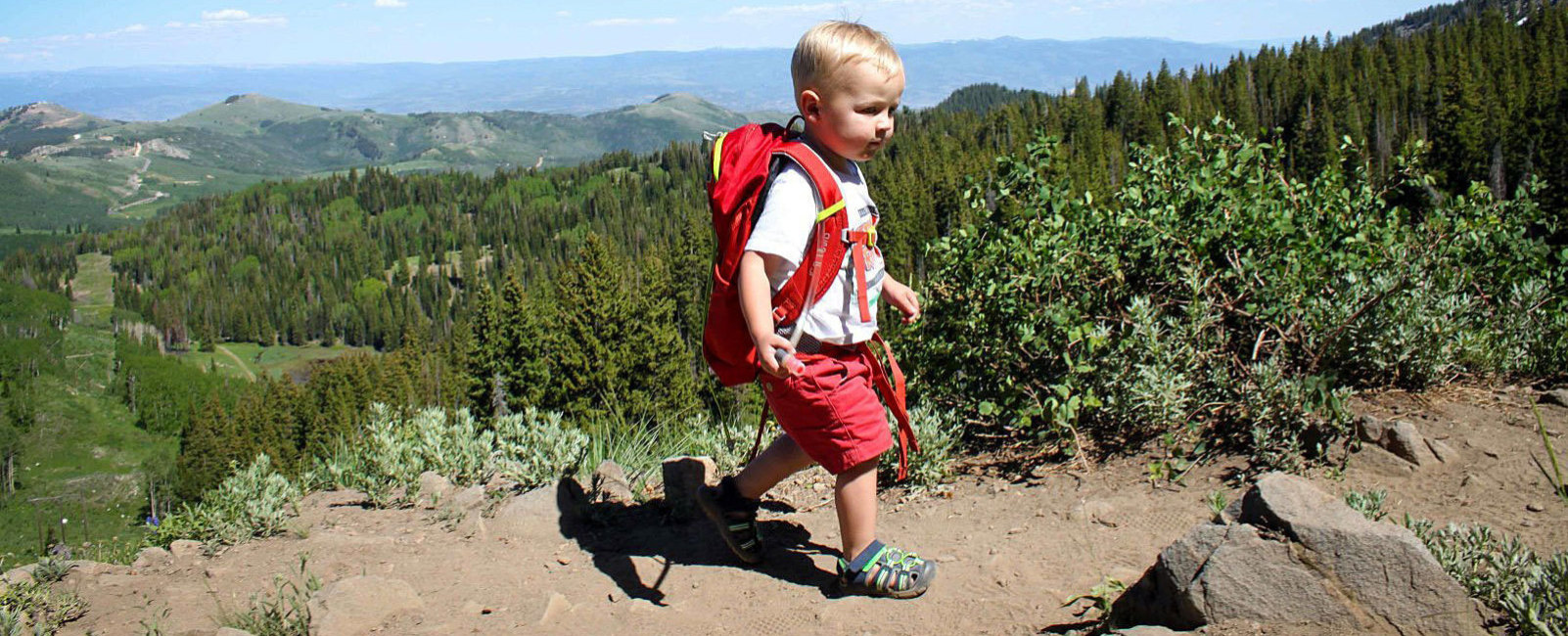 5 Hikes to Help your Toddler Love Hiking