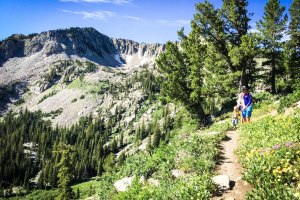 The Ultimate Utah Summer Family Bucket list