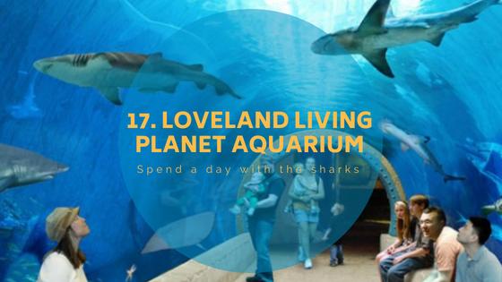 aquariumpng