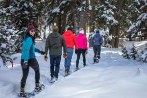 The 5 Best Snowshoeing Trails in Utah thumbnail