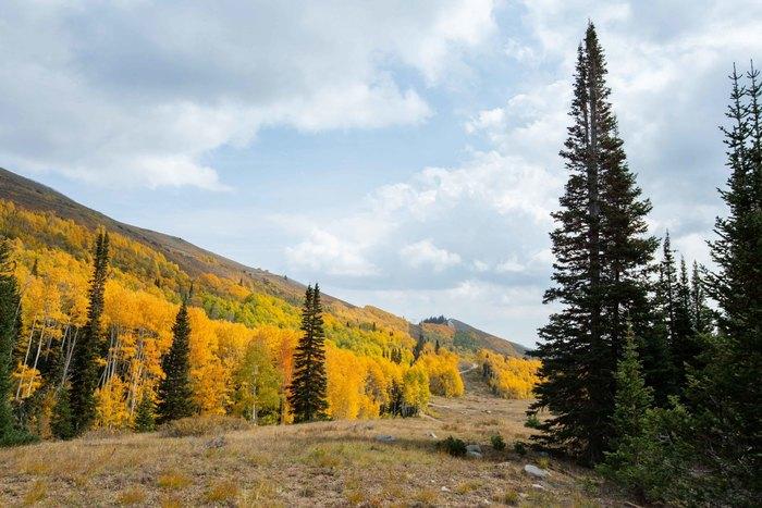 6 Fall Day Trip Hikes in Utah