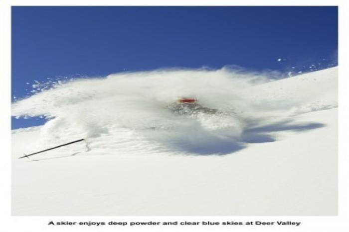036-skier-powder-450x562 (036-skier-powder-450x562)