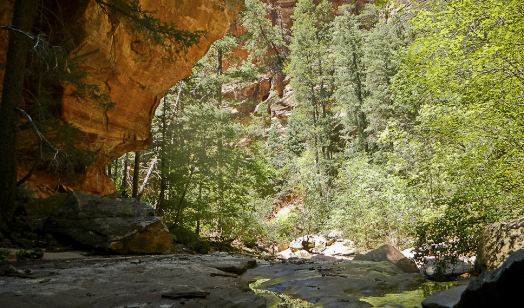 The Subway in Zion