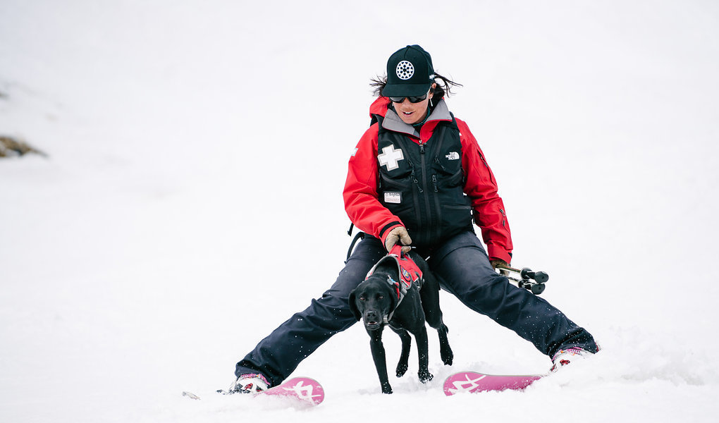 Skiing with a Dog