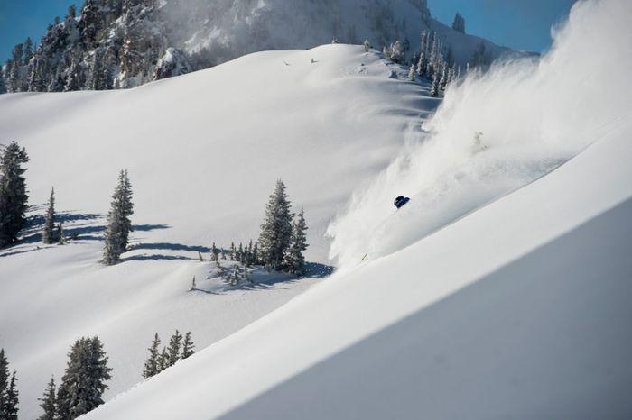 Alta Powder Ski