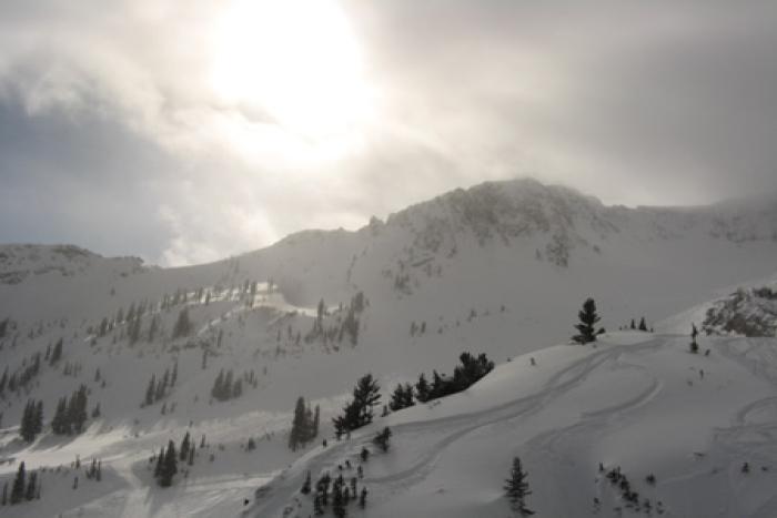 snowbirdmineral450 (snowbirdmineral450)