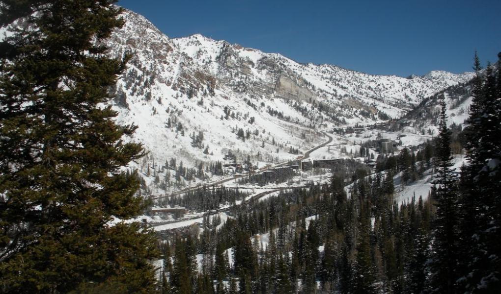 Base of Snowbird