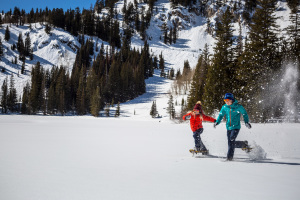The Best Winter Hikes in Utah  thumbnail