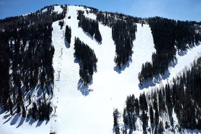 deervalley-trees-wasatch-express (deervalley-trees-wasatch-express)