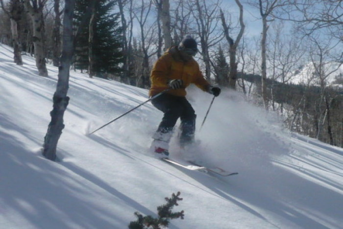 tim_thecanyons-resort_powder2 (tim_thecanyons-resort_powder2)