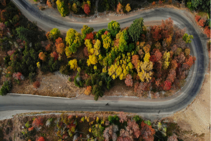 Scenic Drives for Autumn Enthusiasts in Utah