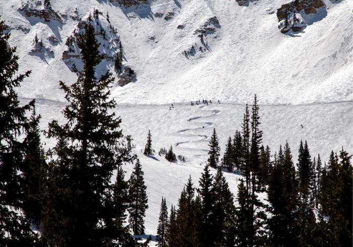 Ski Utah Article - Alta wiggle 2png