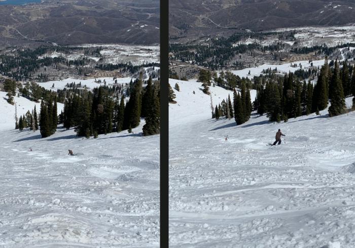 Ski Utah Article -Snowbasinpng