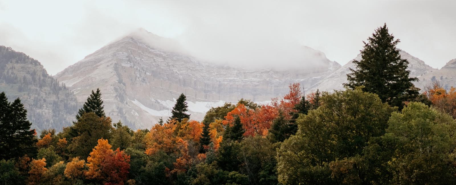 Sundance Now & Then: A Haven for Culture & Natural Splendor