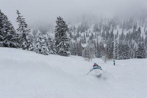 A Deer Valley Powder Day thumbnail
