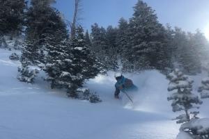Alta-Snowbird Ski Pass Combo thumbnail