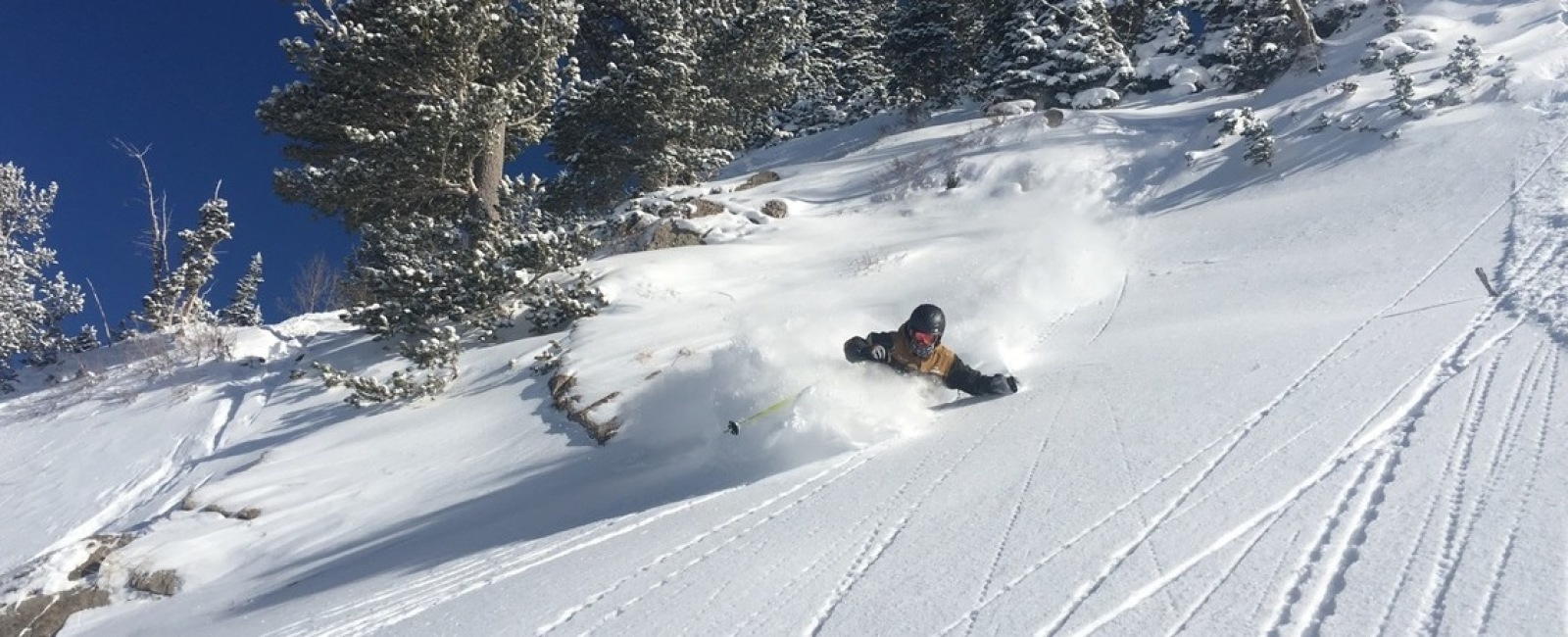 Alta Opening Day - The Best Ever?