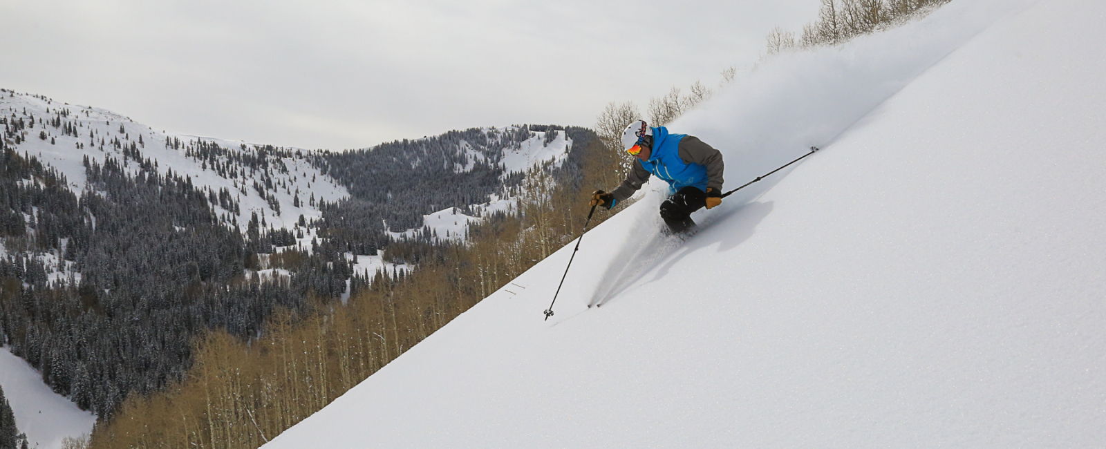 Pinecone and the Peak - Park City's Ultimate Pow Skiing!