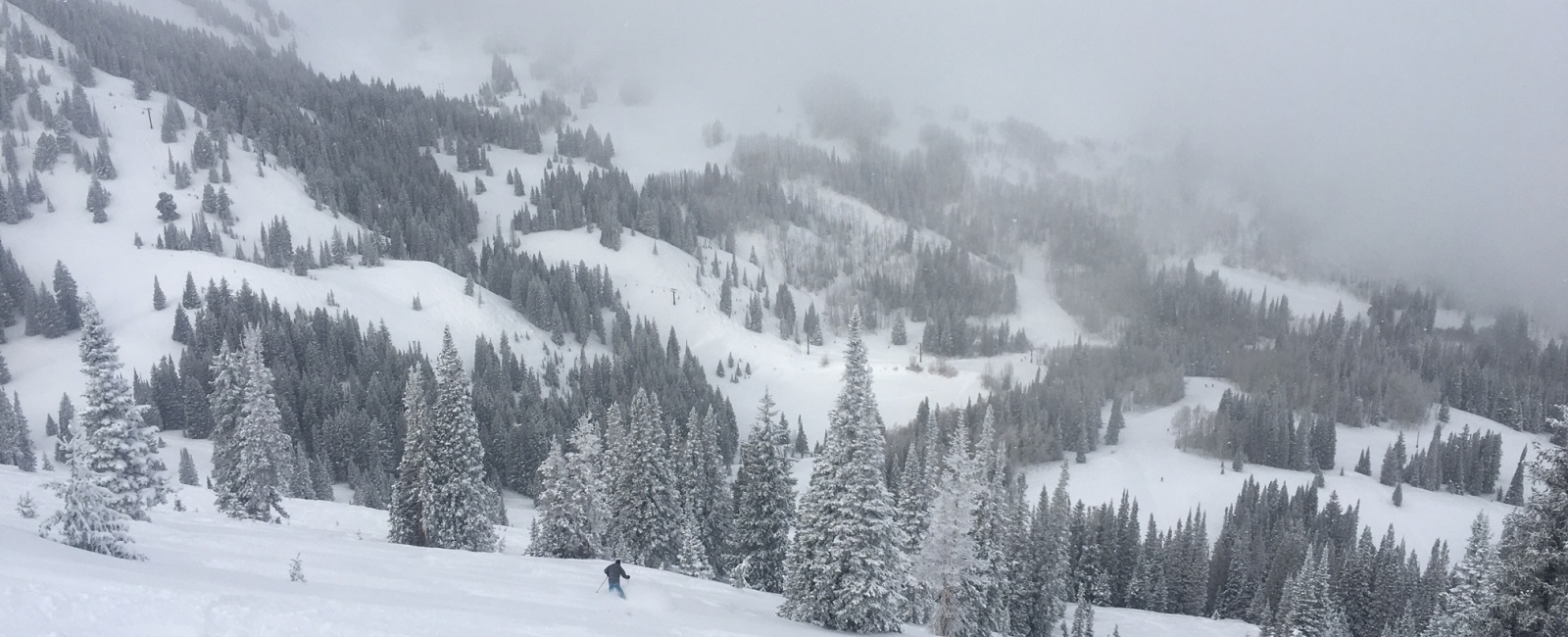 Powder in the Resorts and Powder in Backcountry
