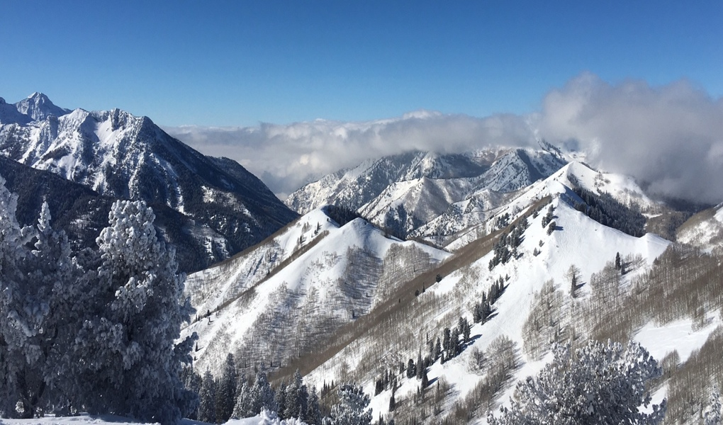 Wasatch Backcountry.jpg