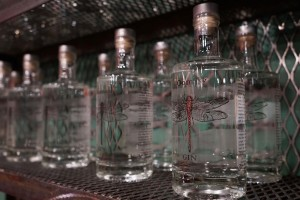New Local Gin in Town Boasts Organic Ingredients and Complex Flavors thumbnail
