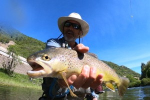 5 Incredible Fly-Fishing Spots in Utah thumbnail