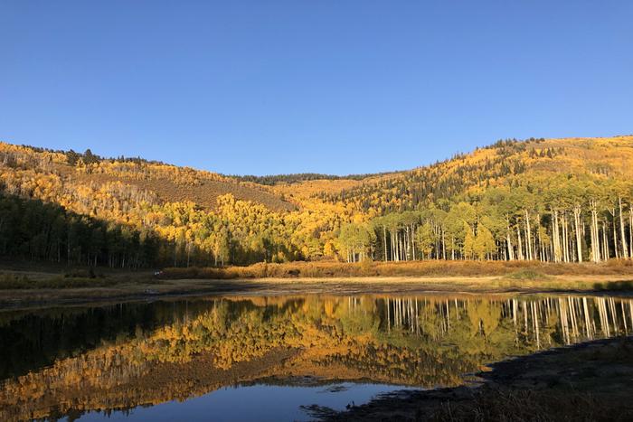 8 Great Family-Friendly Fall Hikes in Utah