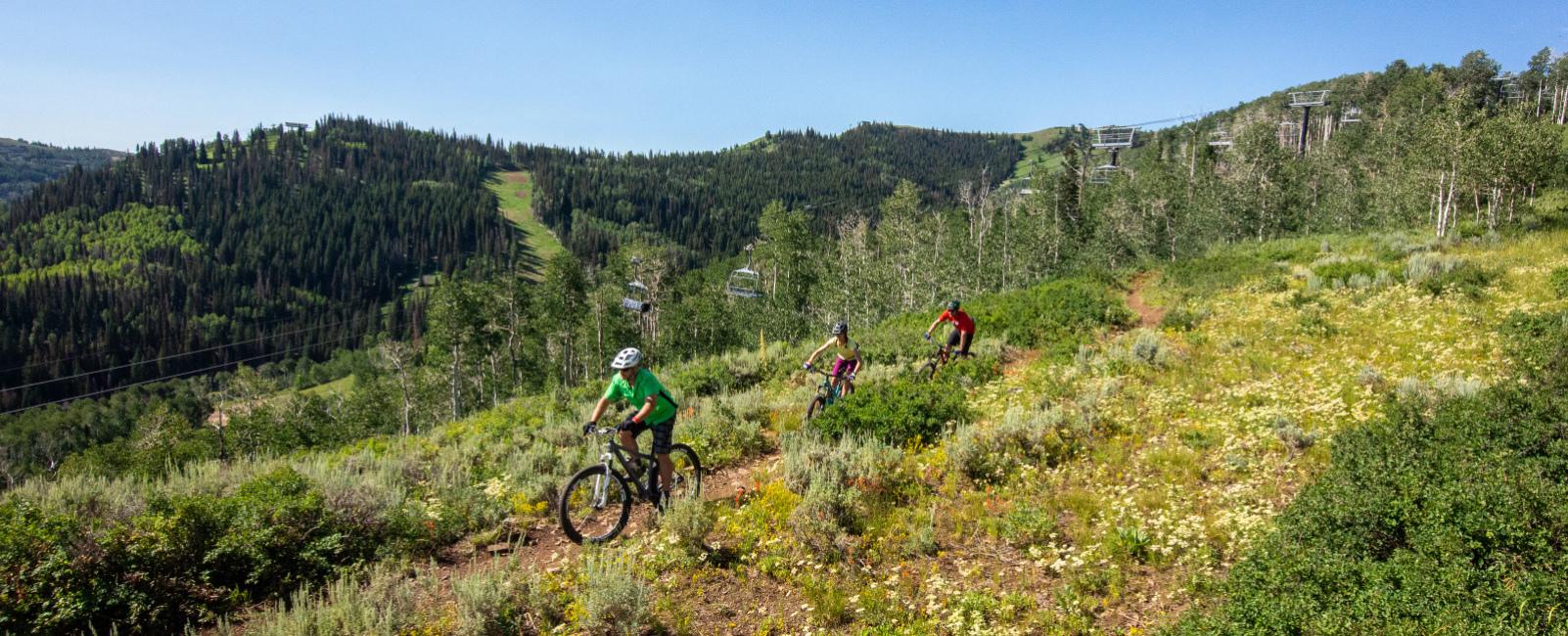 Best Intermediate Mountain Bike Trails in the Wasatch