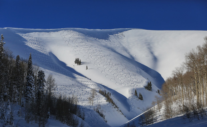 Park City Powder Cats Ski Lines