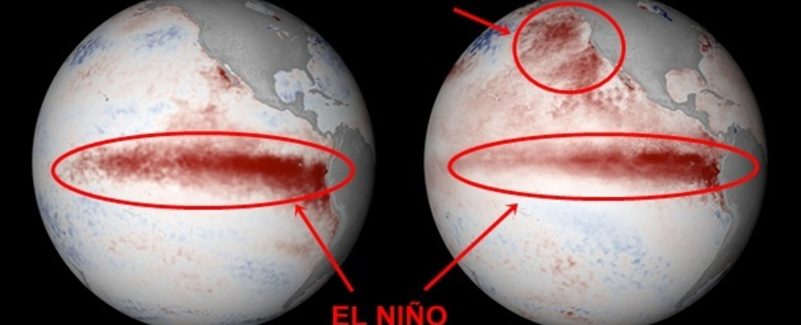 El Niño vs. The Blob - Utah's 2015-16 Winter Forecast