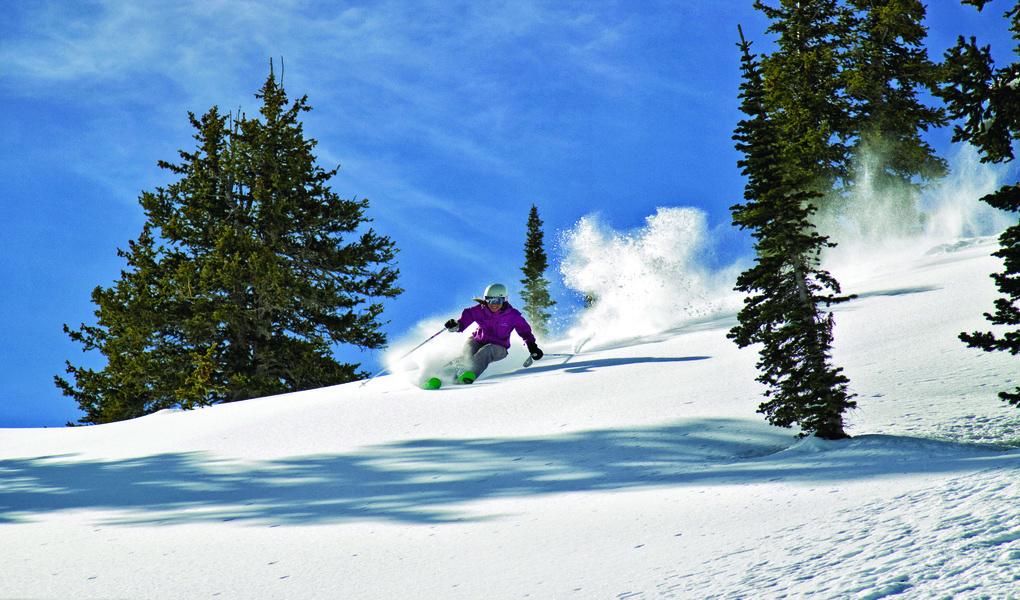 Powder Skiing with Powderbirds
