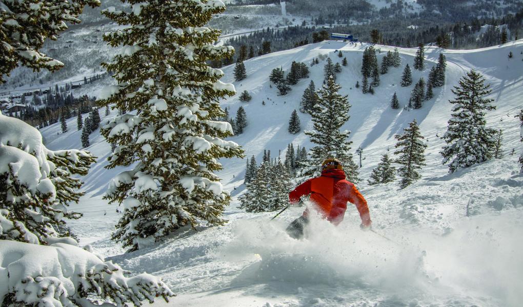 Powder Skiing at Solitude