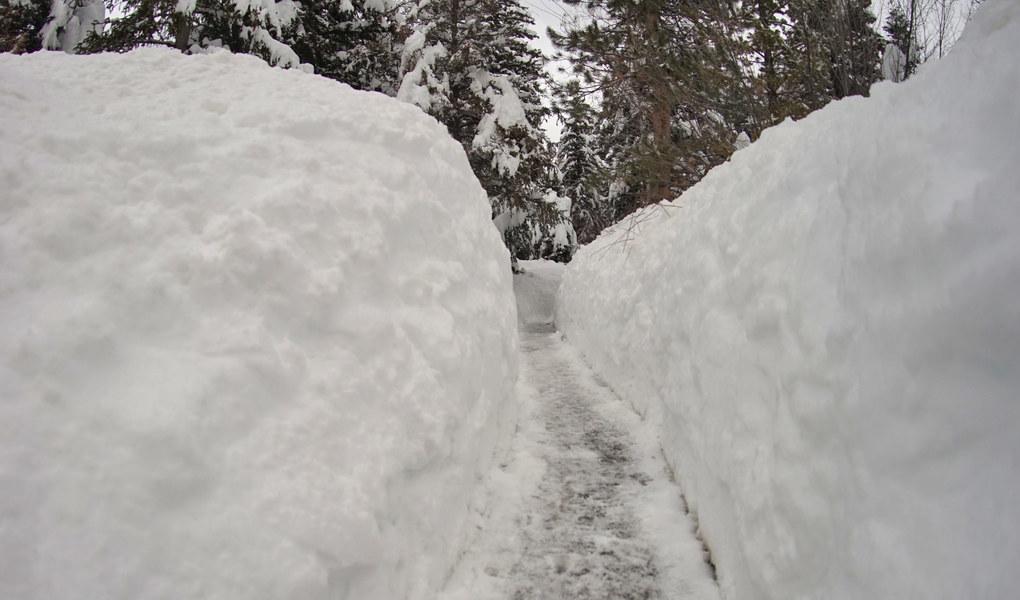 Pathway to Powder