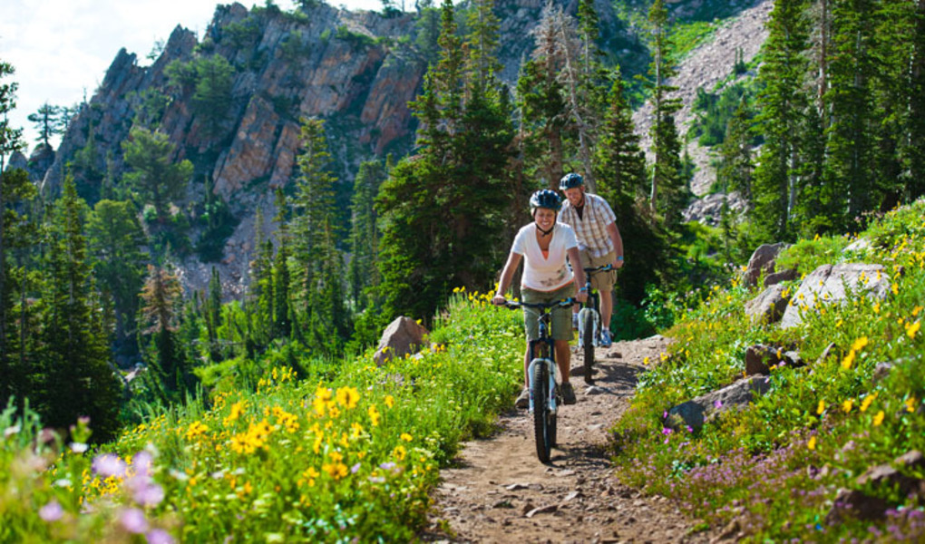 Wildflowers and Mountain Biking