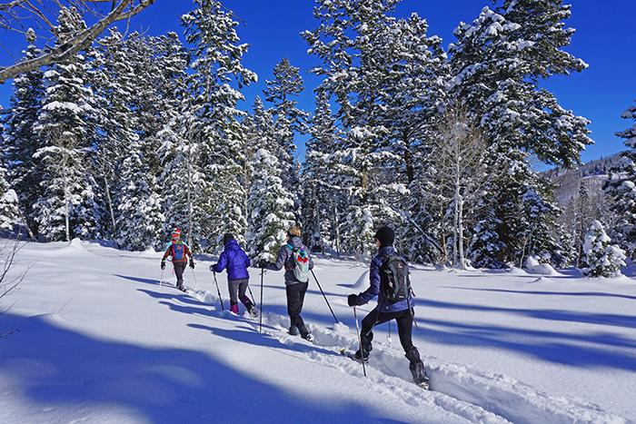Snowshoeing at Daniels Summit 3JPG