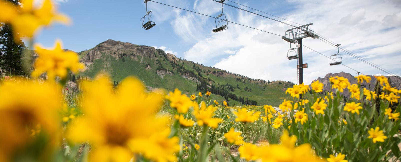 Summer at Utah's Resorts 2019