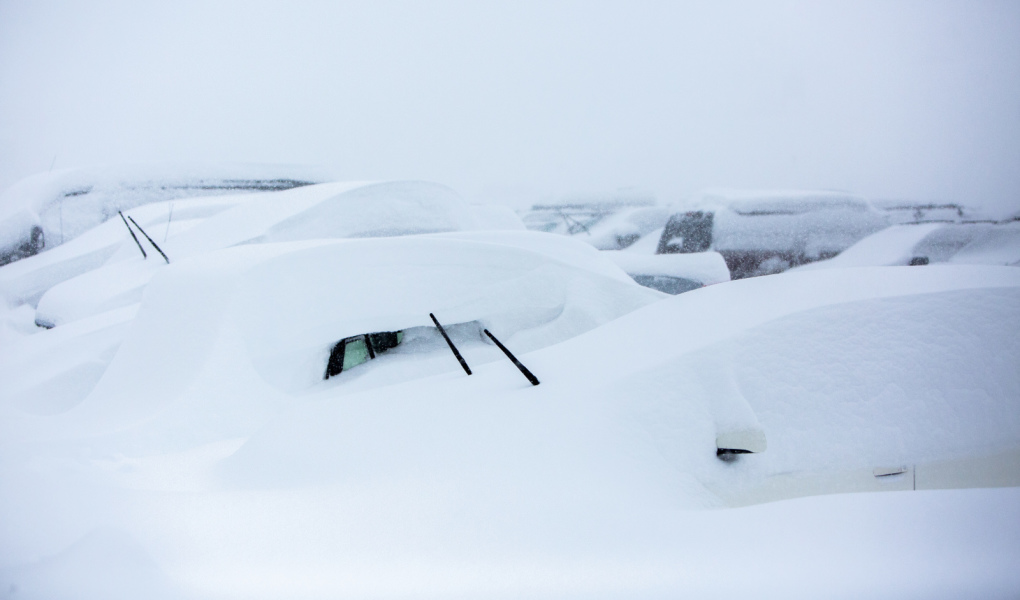 Buried Cars at Alta