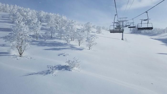 Skiing Powder Mountain Resort