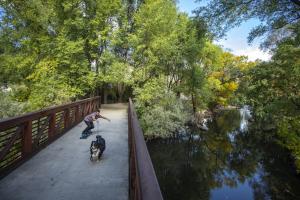 Utah's Paved Pathway Nirvana thumbnail