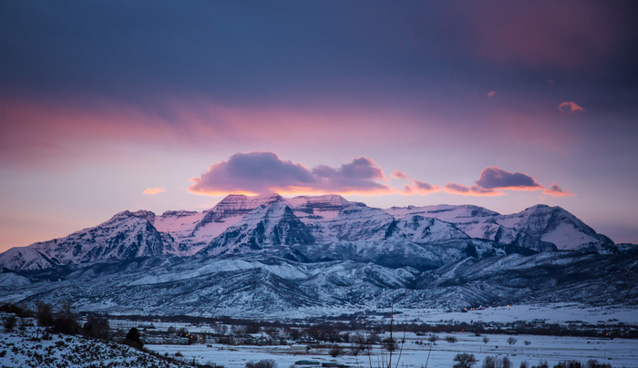 Timp covered in snow