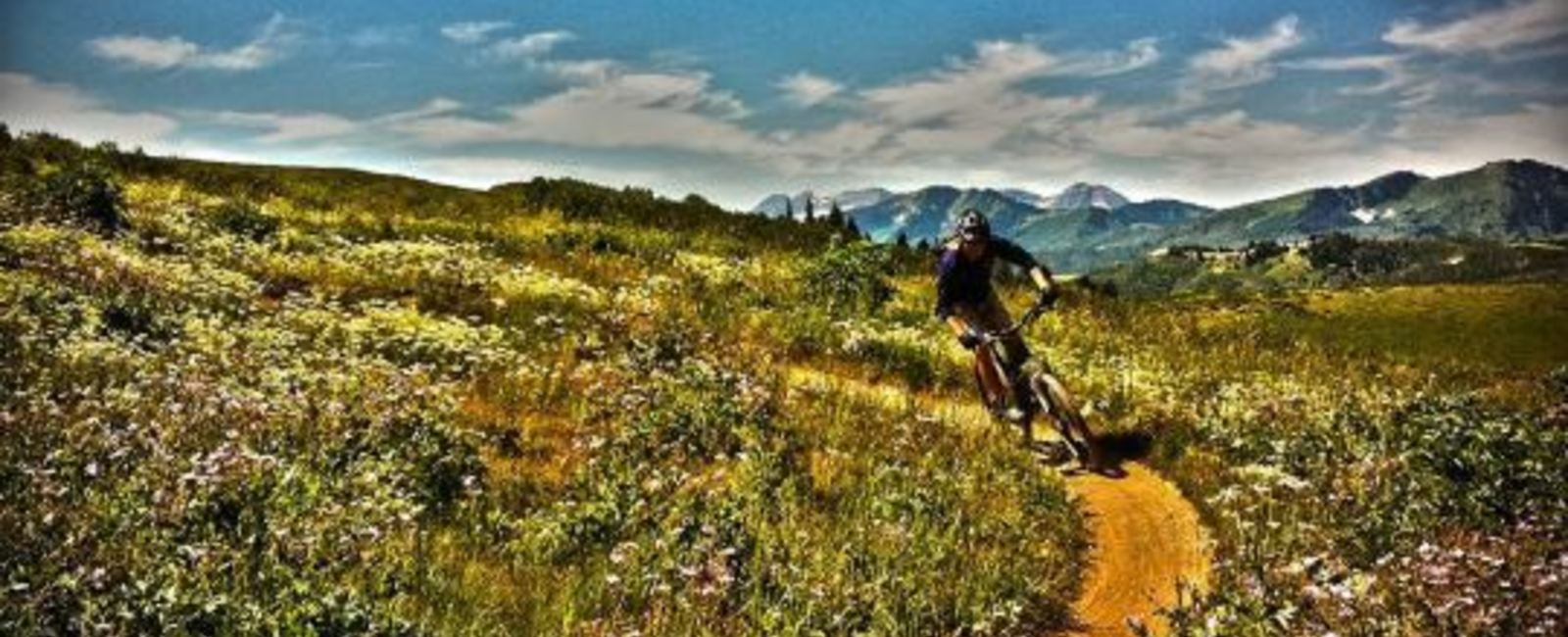 Your Summer Mountain Biking Guide