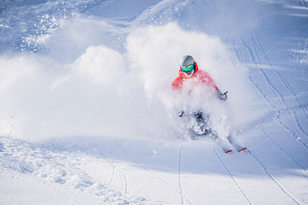 Powder Skier Photo