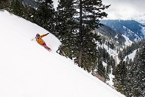 Powder Mountain's Backcountry Experience