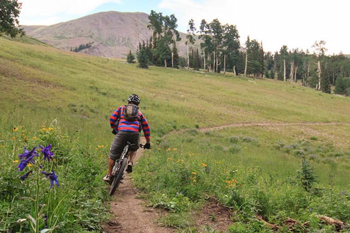 Eagle Point Mountain Biking
