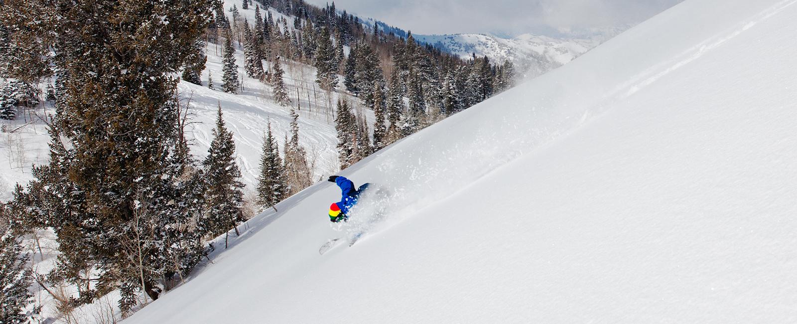Powder Mountain - Inbounds Tours